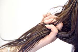 髪のダメージケアには精製されたホホバオイル