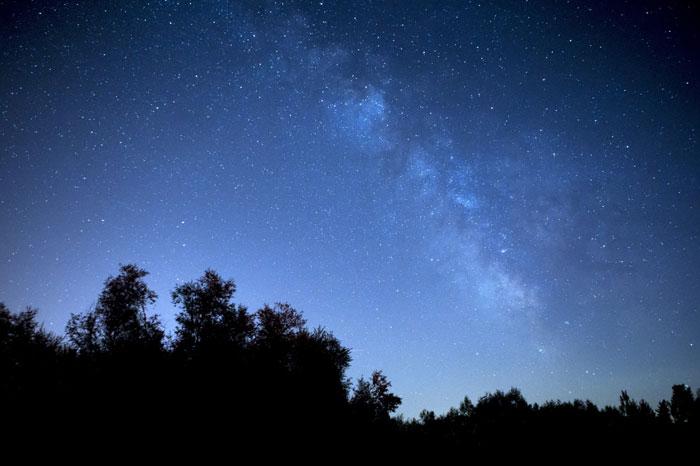 ホホバオイルを頭皮に使うのは「夜」を重点的に!